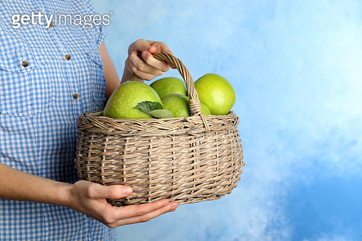 Woman holding wicker basket with ripe juicy green apples on color background. Space for text