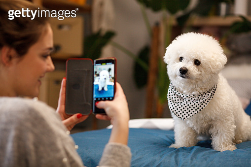 Girl photographing her dog with cellphone