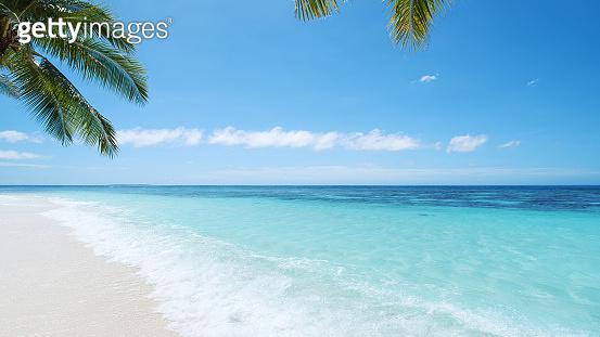 Tropical Paradise Beach And Beautiful Seascape