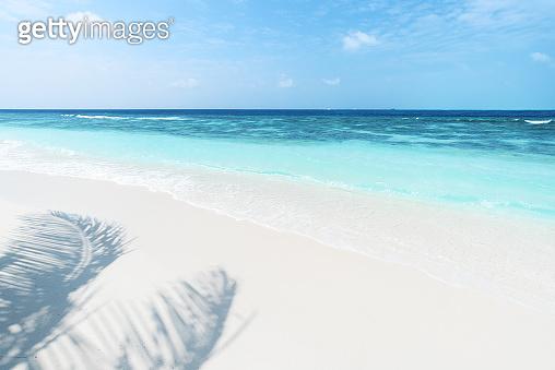Tropical paradise beach of Maldives