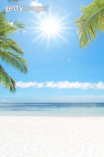 Sunny tropical beach copy space scene
