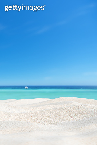Tropical beach sand dune copy space scene