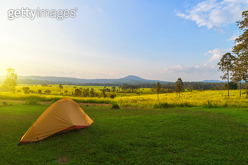 Camping and tent middle of the meadow in beautiful forest view.