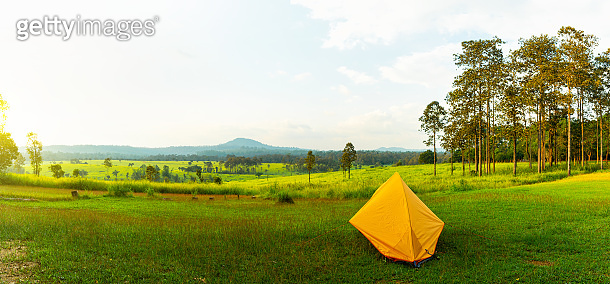 Panoramic camping and tent middle of the meadow in beautiful forest view.