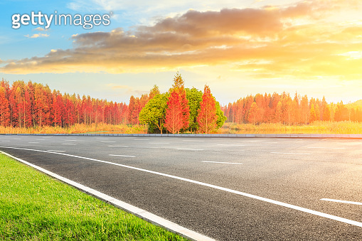 Asphalt road and beautiful colorful forest landscape in the nature park