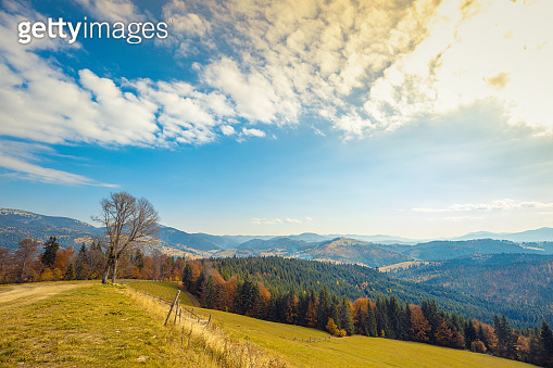 Autumn in the mountains. Panoramic view of the mountains and the valley in autumn. Beautiful nature landscape. Carpathian mountains. Bukovel, Ukraine