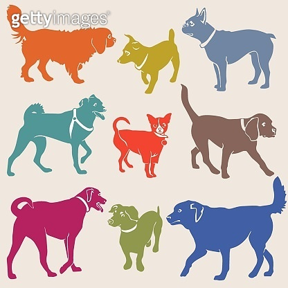 Set of dogs silhouette. Vector. - Vector