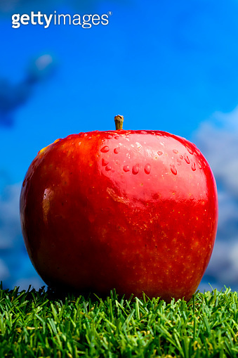 Apple on green grass and with blue sky background