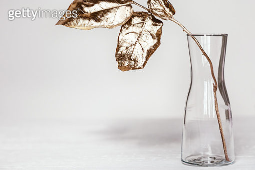 Simple glass vase with branch of tree and bright gold colored leaves on white table. Modern home decoration plant. Minimal still life.
