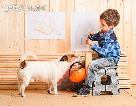 Safety precautions concept with dog carrying hardhat to builder