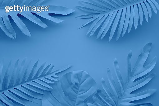 Collection of tropical leaves,foliage plant in blue color with space background