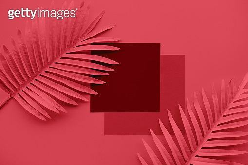 Collection of pastel tropical leaves,foliage plant with space background