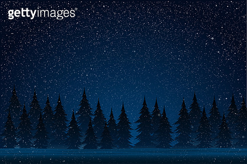White splash on blue background. Forest during a snow storm at night. Christmas tree.