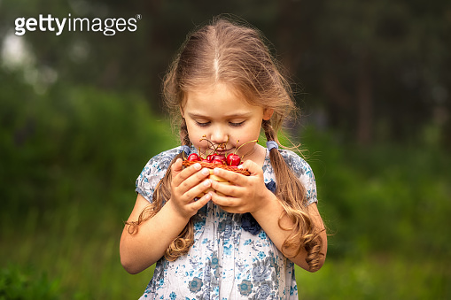 little girl holding a basket of cherries on nature in summer
