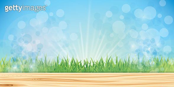 Fairy grass background
