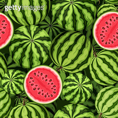 Seamless background with watermelons. Vector illustration.