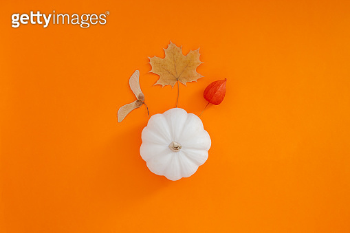 Autumn flat lay composition with white pumpkin