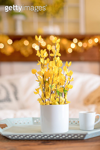 Yellow forsythia plant on living room table - home decor