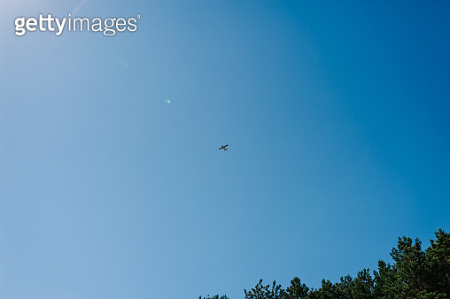 Airplane flying in blue sky. Silhouette small cargo aircraft, airline. Transportation. Agriculture, plane.