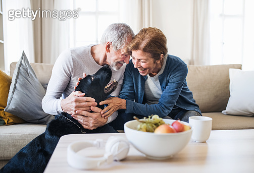 A happy senior couple sitting on a sofa indoors with a pet dog at home.