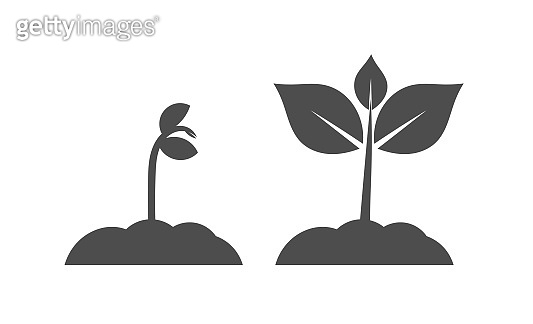 Spring seedlings plants icons.