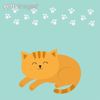 Cute lying sleeping orange cat with moustache whisker. Funny cartoon character. White animal paw print. Blue background. Isolated. Flat design.