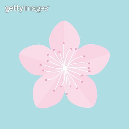 Sakura flower icon. Japan blooming cherry blossom Isolated Blue background Flat design
