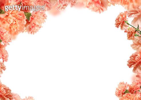 Mother's Day background, carnation frame