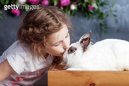 Little girl playing with real rabbit. Child and white bunny on Easter on flower background. Kid kiss pet. Fun and friendship for animals and children.