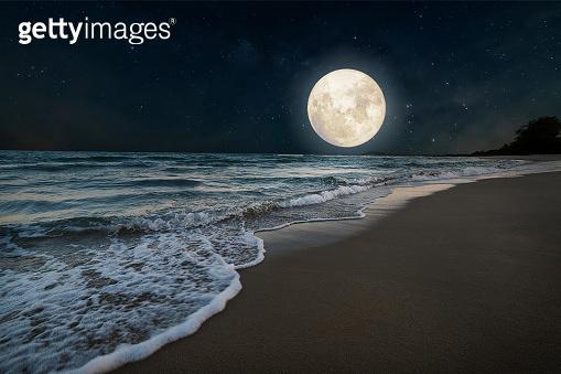 Summer season, honeymoon in night skies background concept.