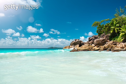 Palm and tropical beach. Vacation holidays travel concept  background wallpaper. Beach and sea. Summer holiday and vacation concept for tourism. Inspirational tropical landscape