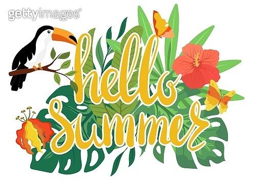 Hello summer text, toucan sit on flower, isolated on white, cartoon vector illustration. Design travel logo, web banner, poster, postcard.
