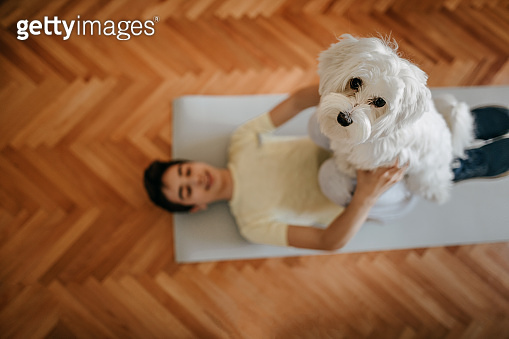 Boy exercising with his pet Maltese dog at home