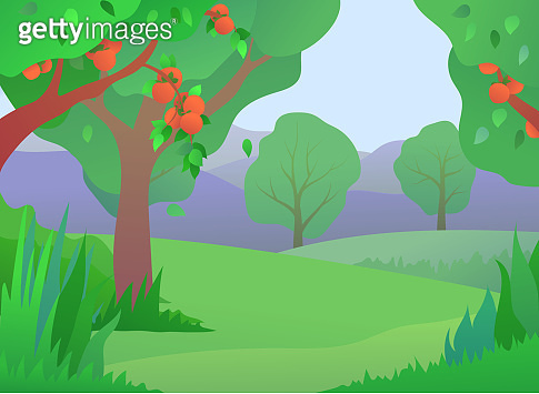 Persimmons orchard illustration in flat style