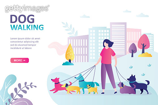 Female character walks with pets in park. Concept of dog walking service, volunteering and pet care. Dog active walker with leash