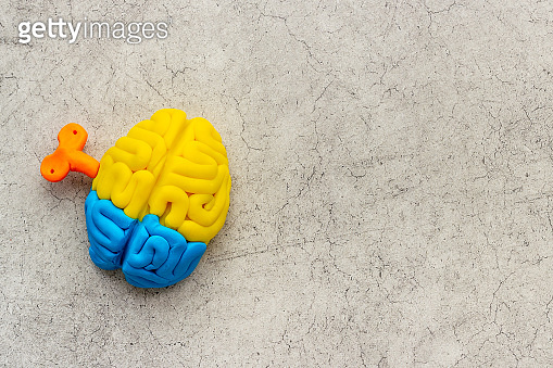 Brain charging and mental health concept. Model of human brain, top view