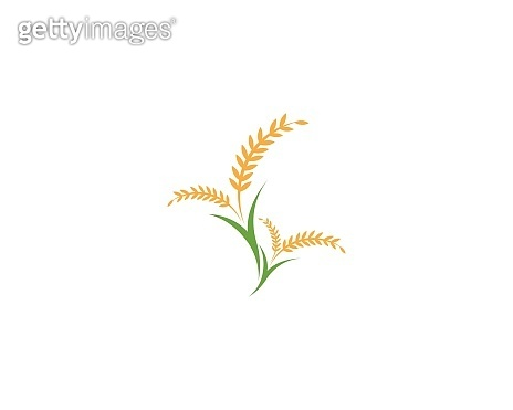 Rice icon and symbol industry agriculture