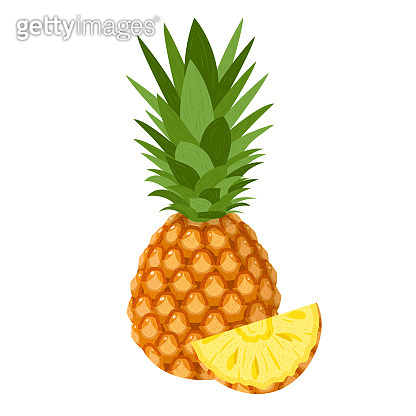 Fresh whole and cut slice pineapple fruit isolated on white background. Summer fruits for healthy lifestyle. Organic fruit. Cartoon style. Vector illustration for any design.