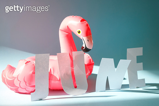 Inflatable pink flamingos on an blue background.
