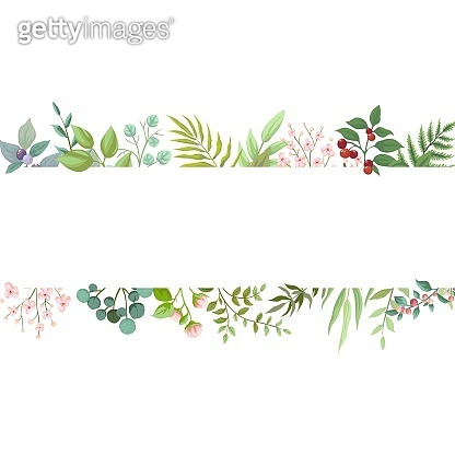 Vector floral greenery card design. Wedding invite poster with rustic garden branches and leaves. Trendy floral borders poster invitation