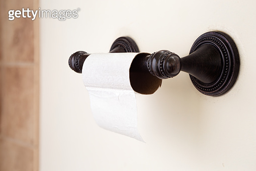 Toilet Paper Shortage in a Home Bathroom