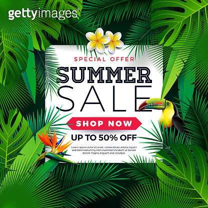 Summer Sale Design with Toucan Bird, Tropical Palm Leaves and Flower on Green Background. Vector Special Offer Illustration with Summer Holiday Elements for Coupon, Voucher, Banner, Flyer, Promotional Poster, Invitation or greeting card.