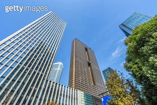 Business towers and Green leaves