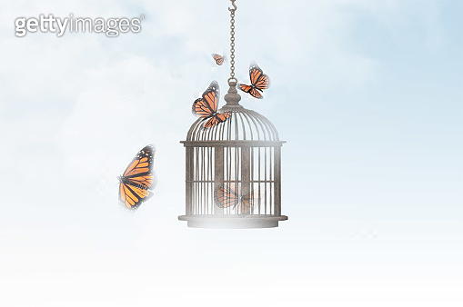 Surreal image of a butterfly trapped in a cage and other free flying butterflies stock photo