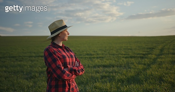 Portrait of smiling woman farmer in a red checkered shirt and hat standing with crossed arms in a field with green wheat and looking on the sunset