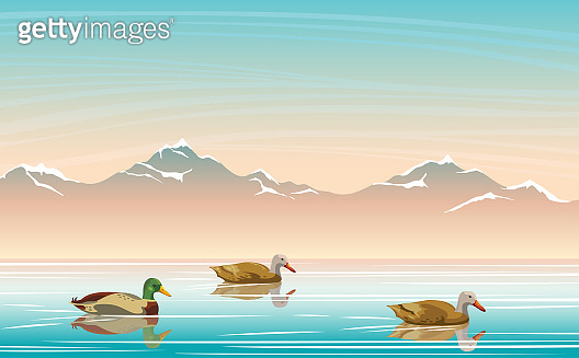 Landscape with  ducks, lake, mountains and sky.
