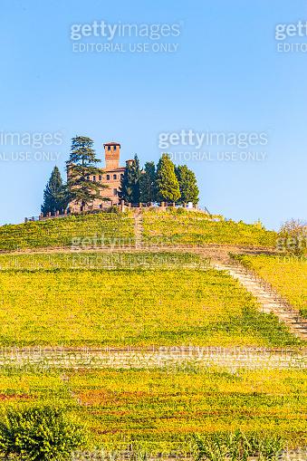 View of Grinzane Cavour Castle, vineyards in Piedmont region, Italy