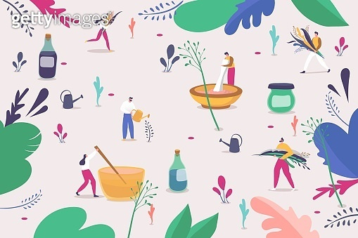 Making herbal natural cosmetic for skin care, vector illustration. People character pick colorful grass and flowers, mixing plants