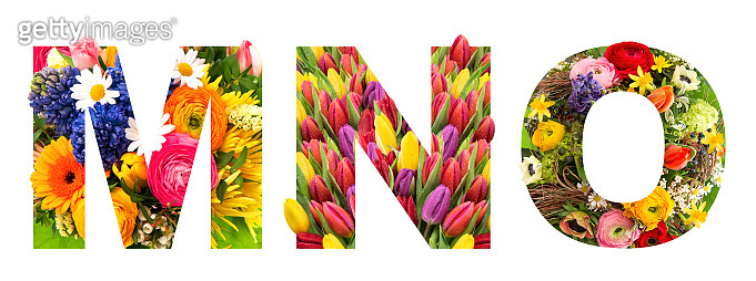 Letter M N O Floral lettering Alphabet ABC flower heads