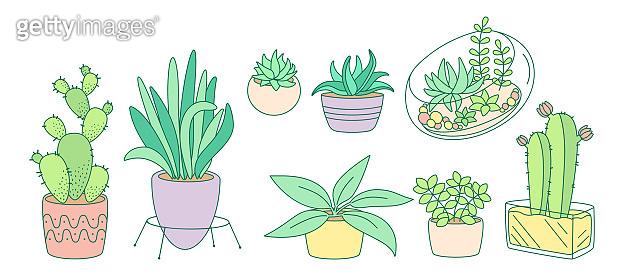 Plant succulent potted flat color line cartoon set